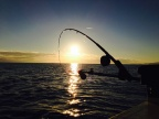 BC - Fishing Charters - call 604-886-9760